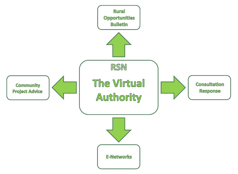 The Virtual Authority1