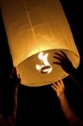 Councils urged to ban sky lanterns